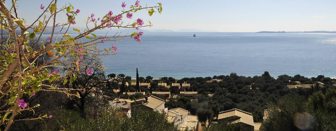 Agios Markos View