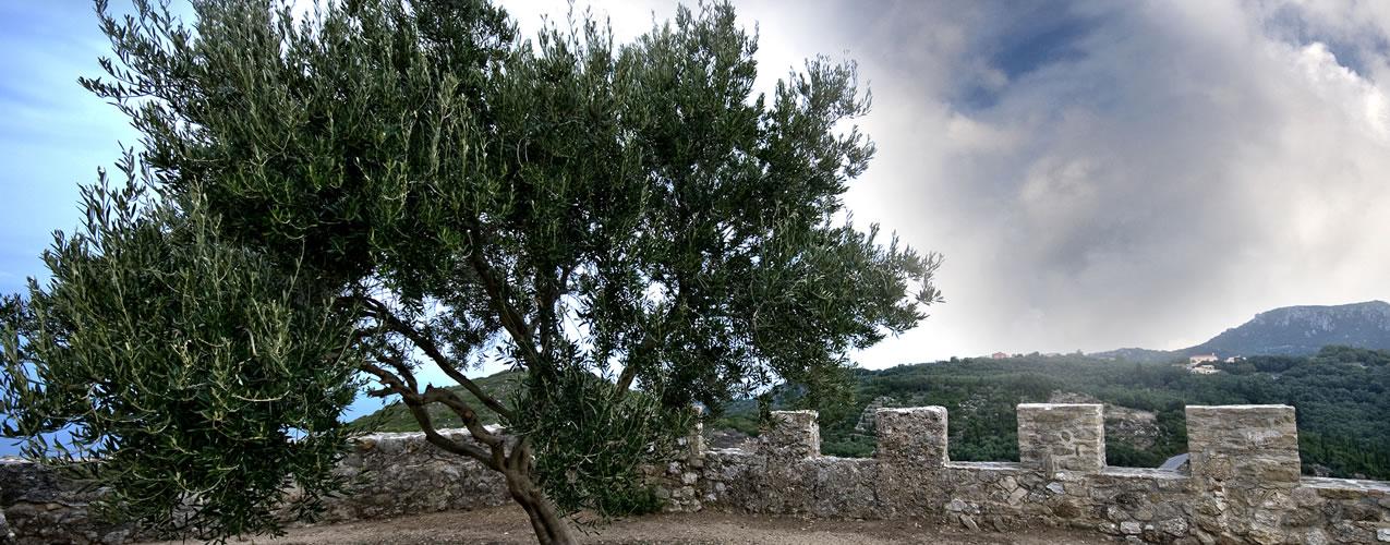 Makrades Walls