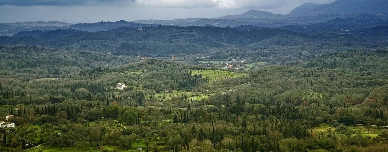 Scripero View