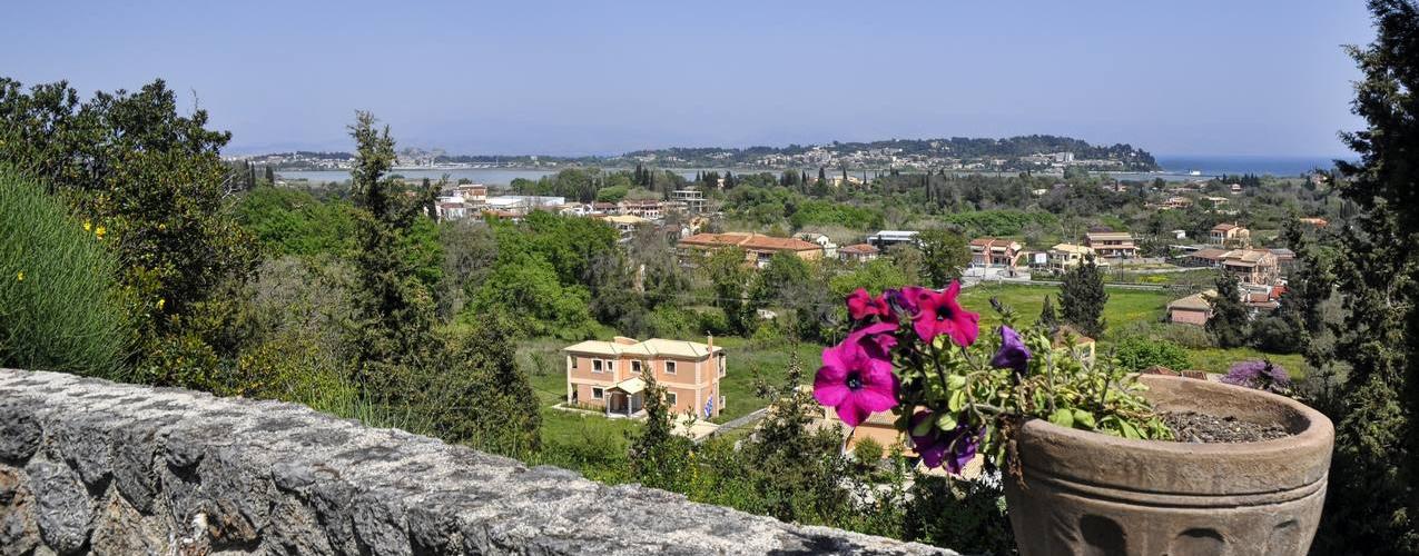 Viros View